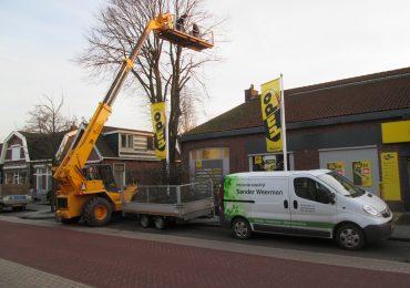 Bomen rooien - Sander Weerman Hoveniersbedrijf